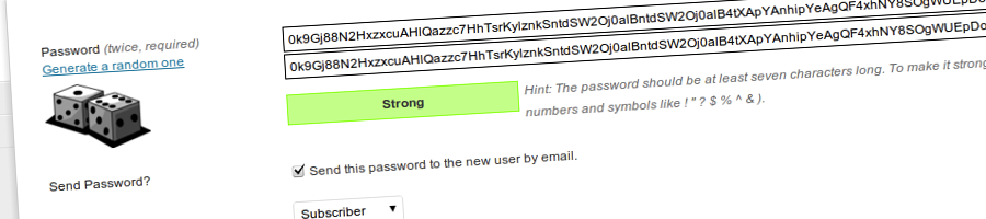 Random User Passwords In WordPress